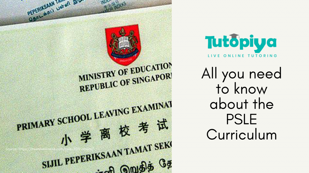 psle tuition
